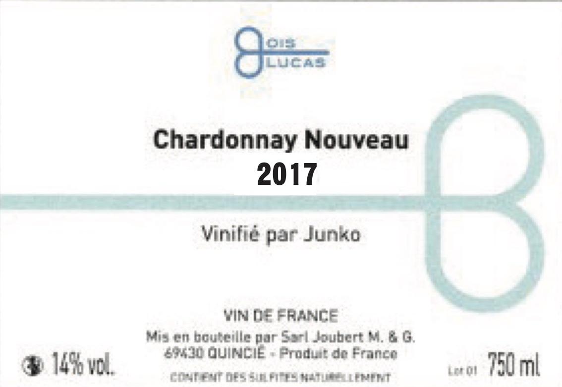 JunkosiroNouveau2017_A4
